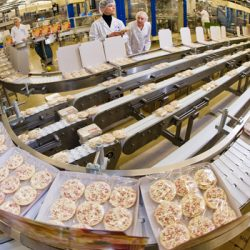 Food Processing & Machinery and Equipment